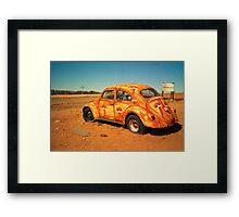desert bug Framed Print