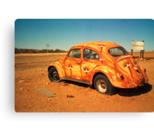 desert bug Canvas Print