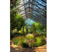 Paradise under glass Photographic Print