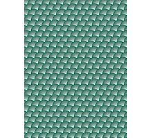 Scales pattern, Japanese inspired Photographic Print