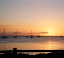 Keppel Golden Sunset by Liz Cooper