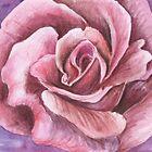 Rose by Rashmita & Raj