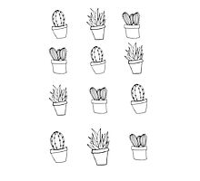 Minimal Cactus Print - Hand Drawn Photographic Print