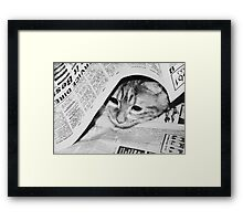 Max ~ looking for Garfield :) Framed Print
