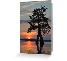 Untouched Sunset Greeting Card