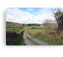 Scenic Irish country road Canvas Print