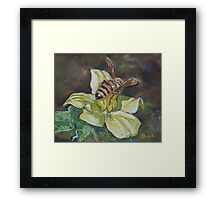 From little things, big things grow Framed Print