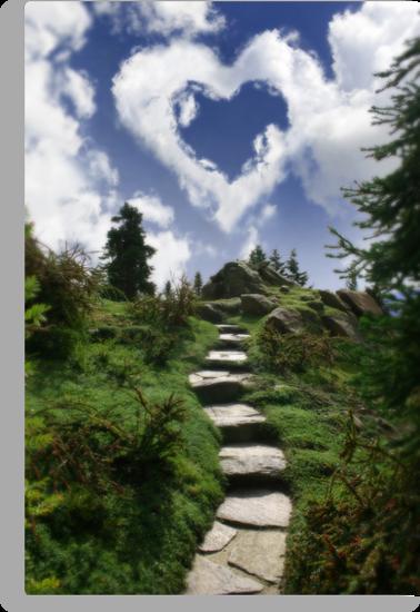 Trail's End by Aimee Stewart