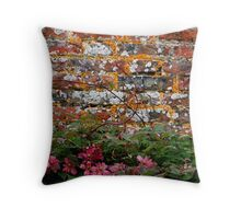 The Old Wall Throw Pillow