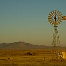 Windmill, Tucson by fauselr