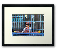 Jailed Jester Framed Print