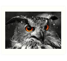 African Eagle Owl part 2 Art Print