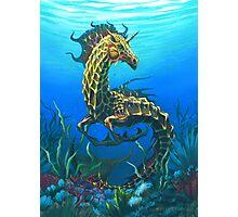 Sea Unicorn Photographic Print