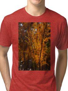 Salt Cedar Tri-blend T-Shirt