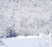 White Snow And Blue Skies Sticker