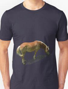 Horse from Kristberg (T-Shirt & iPhone case) T-Shirt