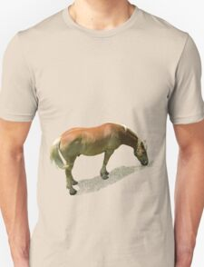 Horse from Kristberg (T-Shirt & iPhone case) T-Shirt