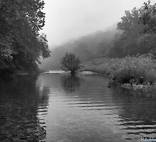 Misty River Morning II by MCAdams