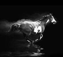 Galloping Pinto Horse and Smoke by Val  Brackenridge