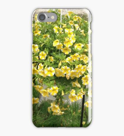 A Basket Full of Flowers iPhone Case/Skin