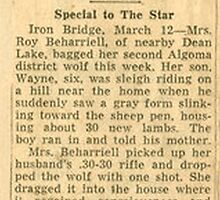 WOMAN KILLS WOLF WITH HOCKEY STICK by cameraperson