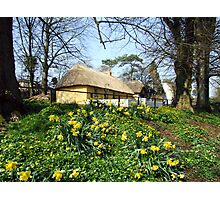 Bunratty cottage view Photographic Print