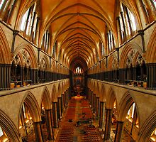 Salisbury Cathedral - The Nave  by delros