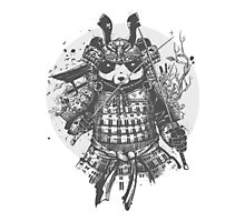 Panda Samurai Photographic Print