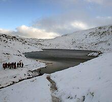 Winter on Mangerton by John Quinn