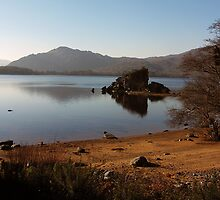 Muckross Lake by John Quinn
