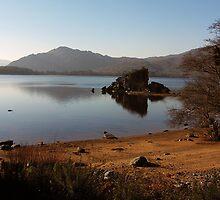 Muckross Lake by John Quinn