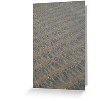 Beach Ridges Greeting Card