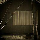 Barn Days by David owens