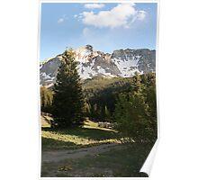 Summertime in Colorado Poster