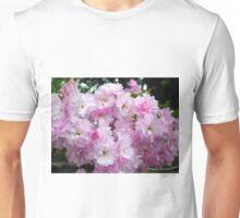 Japanese Delicacy Unisex T-Shirt