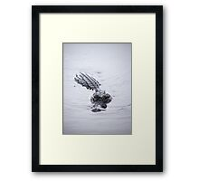 hungry gator Framed Print