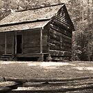 John Ownby&#x27;s Cabin by Gary L   Suddath