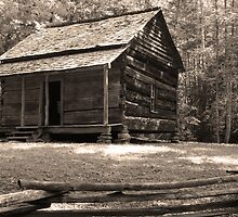John Ownby's Cabin by Gary L   Suddath