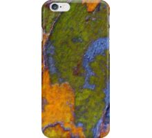 Land of Green and Gold iPhone Case/Skin