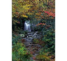 Meigs Falls /Great Smoky Mountain National Park Photographic Print