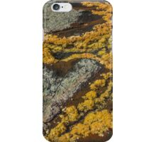 Moss Painting. iPhone Case/Skin