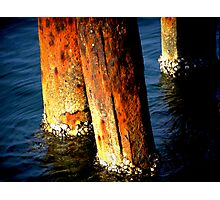 Orange Poles Photographic Print