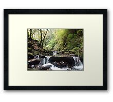 Torc stream Framed Print