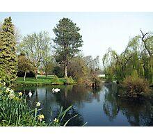 Japenese Gardens pond Photographic Print