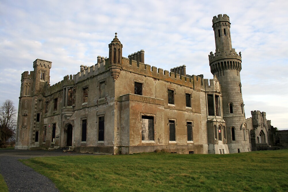 Ducketts Grove castle by John Quinn