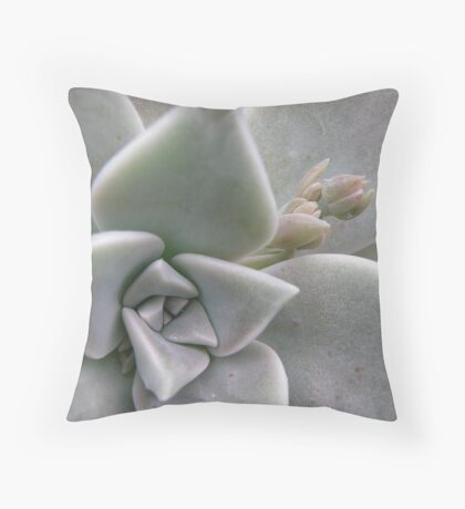 Succulent with flower bud Throw Pillow