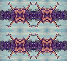 Giraffe kaleidoscope Photographic Print