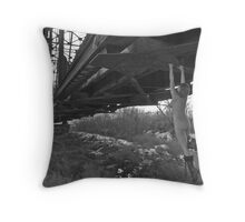 Union Pacific Rose Red Throw Pillow