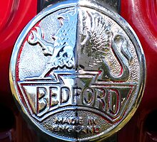 Griffin - Bedford Ambulance Crest by Marilyn Harris