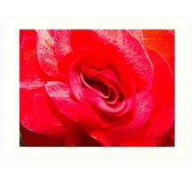 Ruby Red Art Print